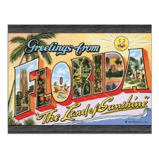 """フロリダからの挨拶""""日光の土地""""、Vin ポストカード"""