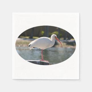 フロリダで取られる切り株の写真の鳥のトキ亜科 スタンダードカクテルナプキン