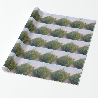 フロリダのオレンジ果樹園の包装紙 ラッピングペーパー