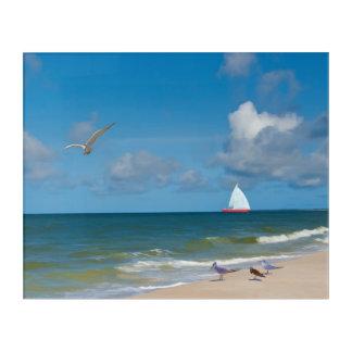 フロリダのビーチ、海岸および鳥 アクリルウォールアート