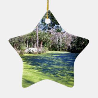 フロリダの川の荒野 セラミックオーナメント