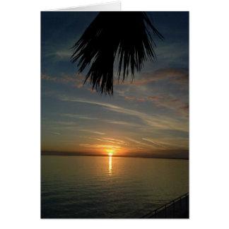 フロリダの日没 カード