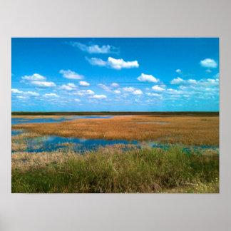 フロリダの沼沢地 ポスター