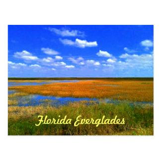フロリダの沼沢地 ポストカード