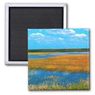 フロリダの沼沢地-磁石 マグネット