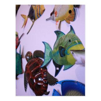 フロリダの海洋生物 ポストカード