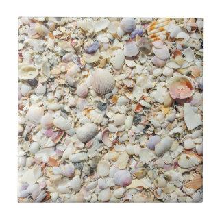 フロリダの熱帯海の貝のビーチの貝の背景 正方形タイル小