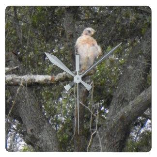 フロリダの《鳥》ハヤブサの柱時計 スクエア壁時計