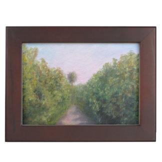 フロリダオレンジ果樹園の記念品箱 ジュエリーボックス