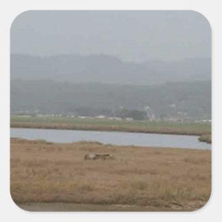 フンボルト北の湾の広い眺め スクエアシール
