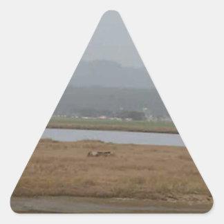 フンボルト北の湾の広い眺め 三角形シール