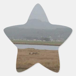 フンボルト北の湾の広い眺め 星シール
