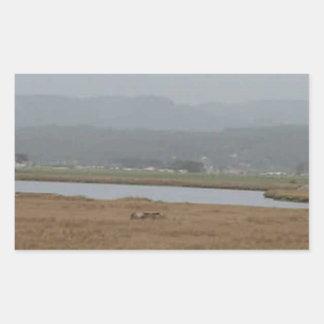 フンボルト北の湾の広い眺め 長方形シール
