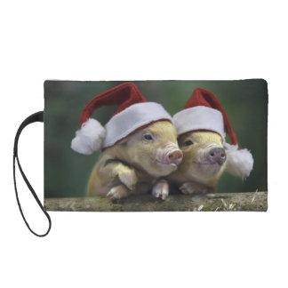 ブタサンタクロース-クリスマスのブタ- 3匹のブタ リストレット
