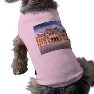 ブダペストの議会 ペット服