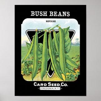 ブッシュ豆の種の包みのラベル ポスター