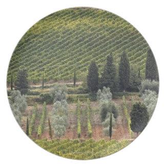 ブドウ園およびオリーブの高い眺め プレート