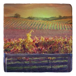 ブドウ園の台所Trivetの美しい日の出 トリベット