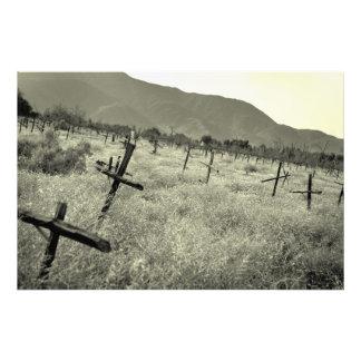 ブドウ園の墓地 フォトプリント