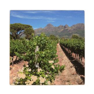 ブドウ園の眺め。 Stellenbosch ウッドコースター