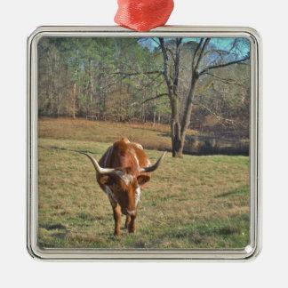 ブラウンおよび白い長角牛のBullの青空 メタルオーナメント