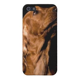 ブラウンのコッカースパニエル犬iPhone4カバー iPhone SE/5/5sケース