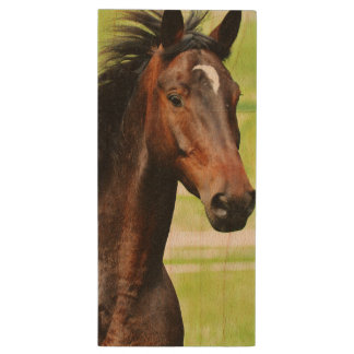 ブラウンの美しい馬の芝生 ウッドUSBフラッシュドライブ