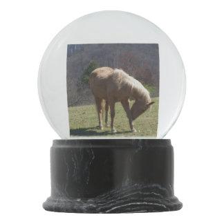 ブラウンの農場馬 スノーグローブ
