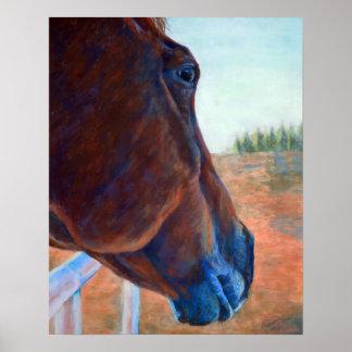 ブラウンの馬の勉強 ポスター