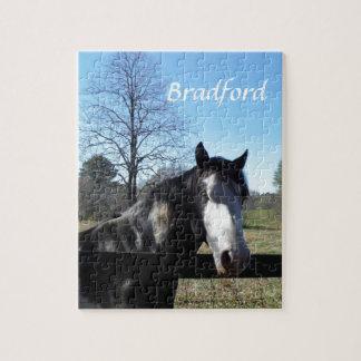 ブラウンの&White、色彩の鮮やかな馬、明るい青空 ジグソーパズル