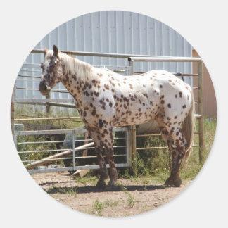 ブラウンはAppaloosaの馬に斑点を付けました ラウンドシール