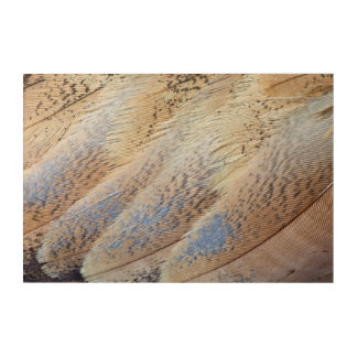 ブラウンセネガルのノガン科の抽象芸術 アクリルウォールアート