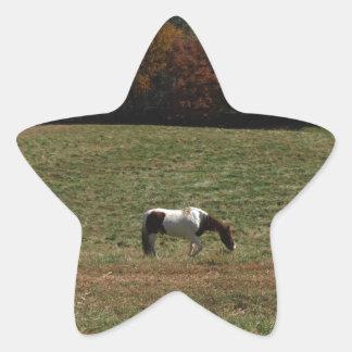 ブラウン及び白馬 星シール