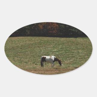 ブラウン及び白馬 楕円形シール