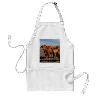 ブラウン大きい高地牛、 スタンダードエプロン