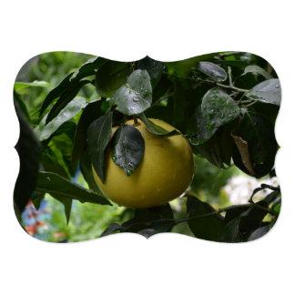 ブラジルのグレープフルーツ カード