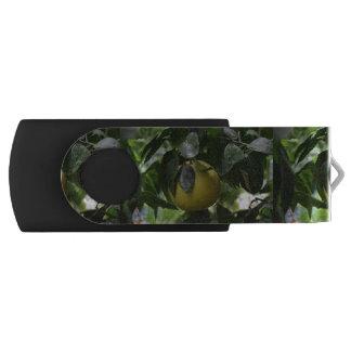 ブラジルのグレープフルーツ USBフラッシュドライブ