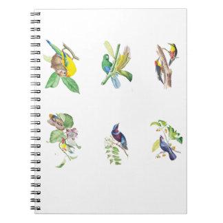 ブラジルの熱帯鳥 ノートブック