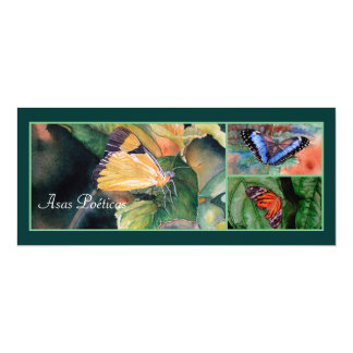 ブラジルの蝶招待状 カード