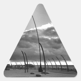 ブラックプールのポッド 三角形シール