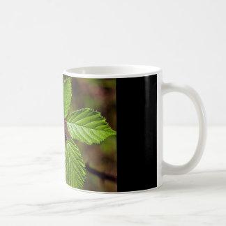 ブラックベリーの葉 コーヒーマグカップ
