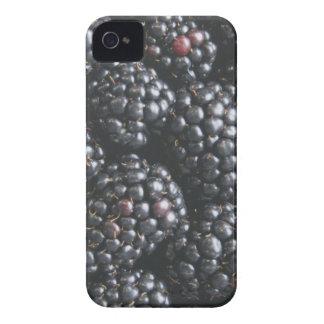 ブラックベリー Case-Mate iPhone 4 ケース