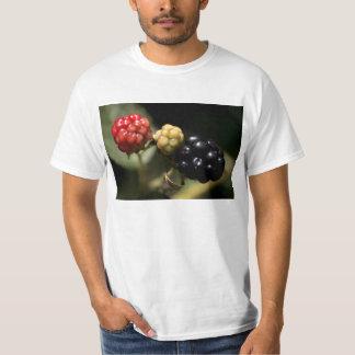 ブラックベリー Tシャツ