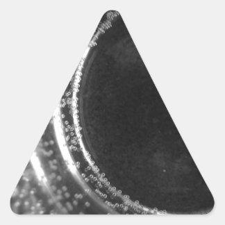 ブラックホール 三角形シール