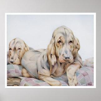 ブラッドハウンド犬のヴィンテージのプリント ポスター