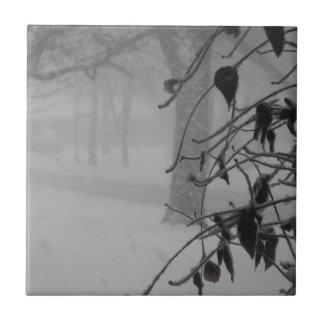 ブリザードの間のクレマチスおよび雪の秋 タイル