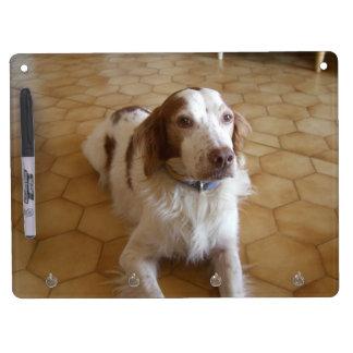 ブリッタニースパニエル犬の置くこと キーホルダーフック付きホワイトボード