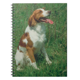 ブリッタニースパニエル犬犬のノート ノートブック