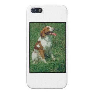 ブリッタニースパニエル犬 iPhone 5 カバー