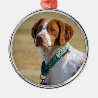 ブリッタニー犬の美しい写真の円形のオーナメント メタルオーナメント